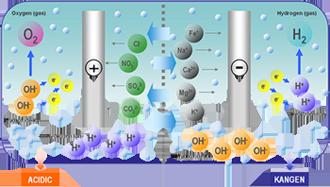 Electrolysis-trans